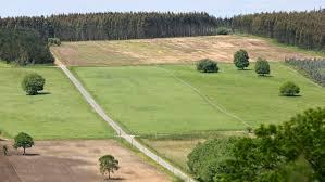 La Xunta de Galicia aprueba la «Lei de recuperación da terra agraria de Galicia»